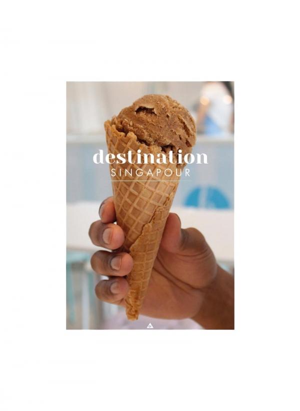 Livre Destination Singapour